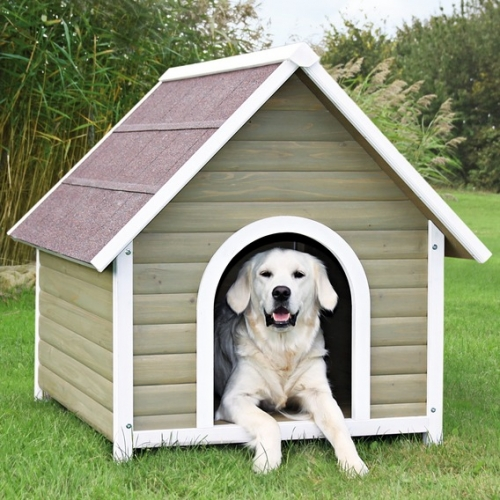 Pet kennels for What is dog boarding