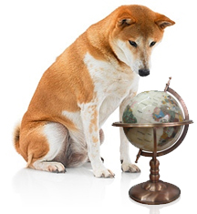 dog globe